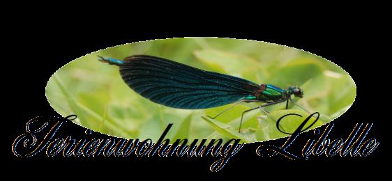 Ferienwohnung Libelle